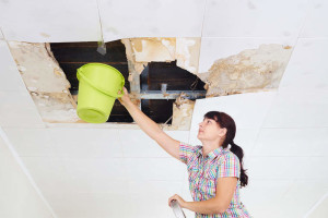 7 Signs That You Need To Call A Professional In A Water Leak Situation